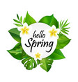 hello spring greeting card with 3d tropical palm vector image vector image