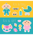 Its a boy girl banner set Baby shower card with vector image vector image