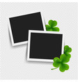 photo with clover transparent background vector image vector image
