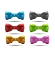 Set of colorful abstract fashion bow tie in vector image vector image