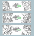 sketch superfood icons set vector image vector image
