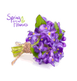 Small bouquet with meadow violets vector image