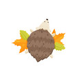 small cute hedgehog with closed eyes lies on the vector image vector image
