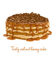 tasty walnut honey cake vector image vector image
