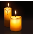 Two burning candles vector image