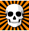 White skull on black orange beams vector image vector image