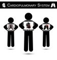 Cardiopulmonary System vector image vector image