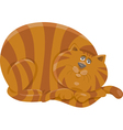 fat cat character cartoon vector image vector image