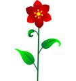 flower red vector image vector image