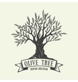 Hand-drawn graphic logo with olive tree vector image