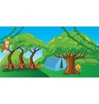 monkey in jungle cartoon forest ape vector image