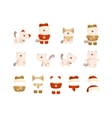 set of cat in clothes vector image vector image
