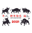 black ox silhouettes with chinese new year symbols vector image