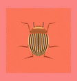 flat shading style colorado beetle vector image