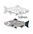 hand drawn salmon fish black and white and color vector image vector image