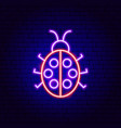 ladybug neon sign vector image