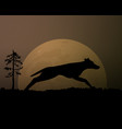 moon in the night silhouette black wolf magic vector image vector image