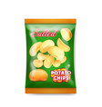 potato chips salted packaging design vector image