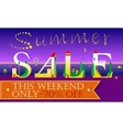 Summer Sale This weekend only Seventy percents vector image