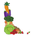 vegetable border vector image vector image