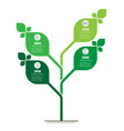 vertical green infographics or timeline the vector image vector image