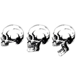 White human skull in profile projection set vector image vector image