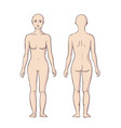 woman body front and back vector image vector image