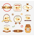 Apricot set of label design vector image vector image