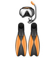 diver equipment snorkel mask and flippers vector image vector image
