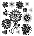 Flower petals overlapping black and white vector image vector image