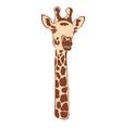 giraffe body part head neck vector image