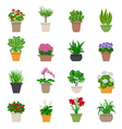 Houseplant Icons Set vector image vector image