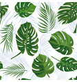 seamless hand drawn tropical pattern with palm vector image vector image