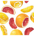 seamless pattern in with citrus fruit slices vector image
