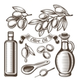Vintage olive oil set vector image vector image