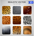 wild animals fur texture set vector image vector image