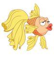 cute cartoon goldfish vector image