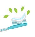 Toothbrush with mint paste Isolated on white vector image