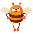 bee looking mad on white background vector image vector image