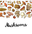 hand drawn mushrooms background vector image vector image