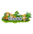tiger is playing in the garden vector image vector image