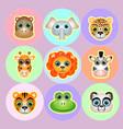 zoo animals faces icon set vector image