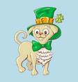 a cute st patrick s day funny vector image