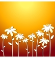 beautiful autumn flowers vector image