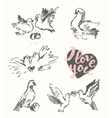 Drawn wedding pigeon love symbol sketch vector image