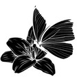 flower and butterflie silhouette vector image