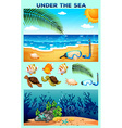 Ocean theme with beach and underwater vector image