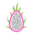 pitaya flat icon dragon fruit and tropical vector image