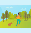 woman walking with dog in city park cartoon vector image