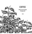 background with coffee sketch vintage vector image